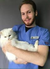 Veterinary Assistant - Cedric