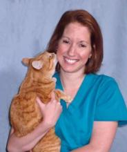 Licensed Veterinary Technician - Sherry, L.V.T.